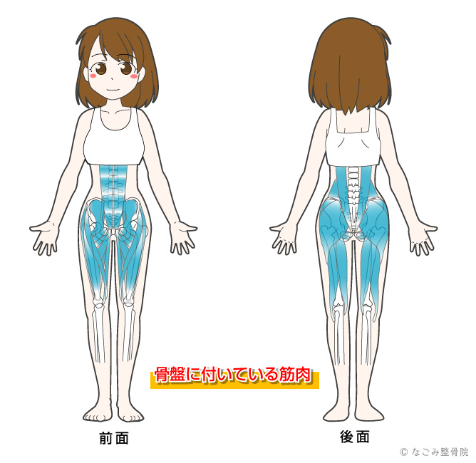 産後の骨盤矯正のイメージ